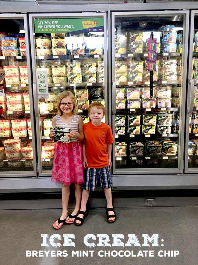 Breyers Mint Chocolate Chip Ice Cream #shop