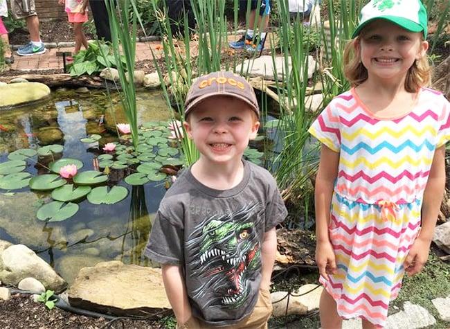 Butterfly Atrium Hershey Gardens